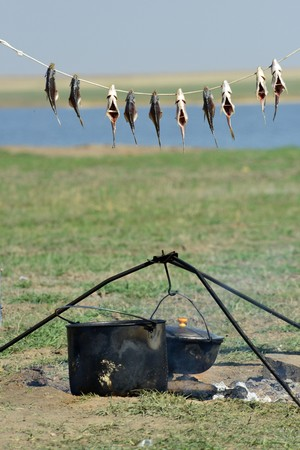 stockfish: Drying fish over the fire in the steppe