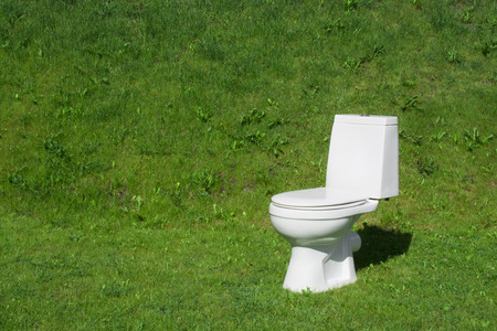 The toilet standing on the lawn