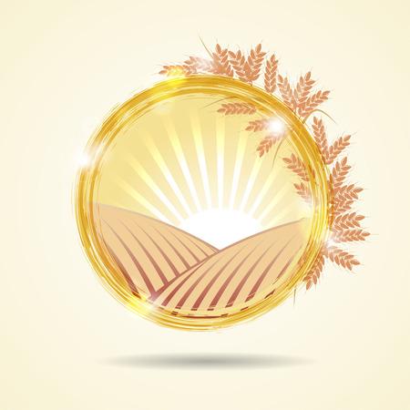 Abstract vector illustration of a wheat field at sunset Ilustracja