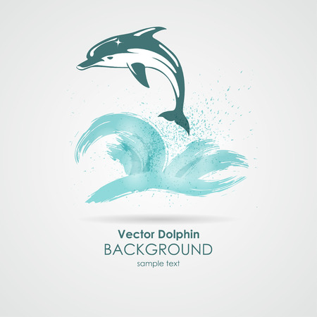 Dolphin in water splash Vector