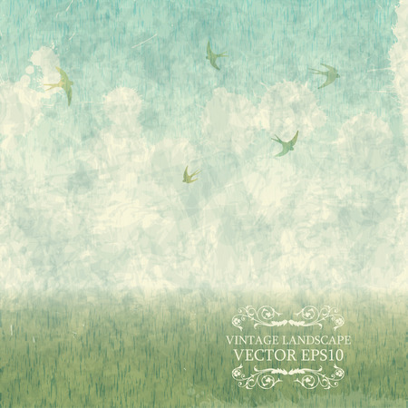 autumn sky: Vintage summer landscape with meadows and swallows. Vector grung Illustration