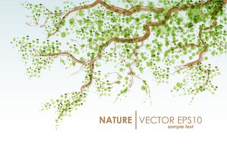 fondo natural: