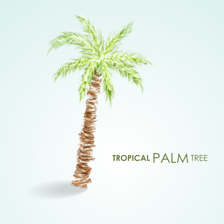 Vector tropical palm tree. Grunge vector
