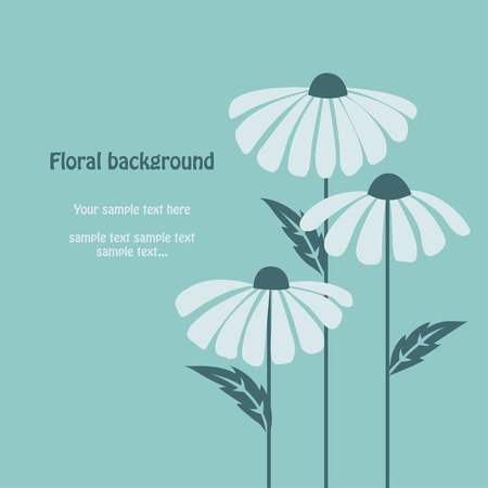 Floral spring nature design vector. Chamomile background