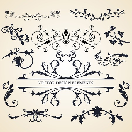 Vector set of decorative design elements fashion