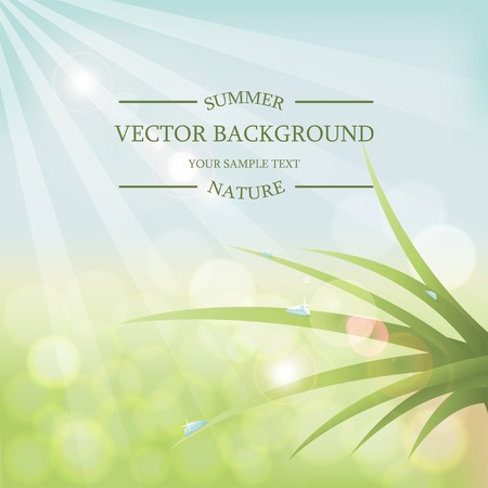 Vector summer background with sunlight. Green grass with dew drops