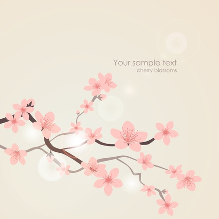 single tree: Vector cherry blossoms. Nature floral pink background