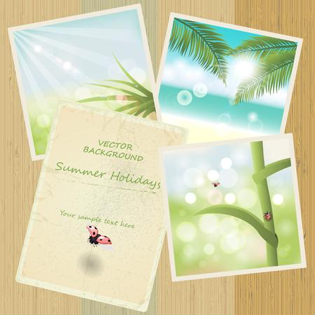 Photo of summer vacation  with flying ladybug Zdjęcie Seryjne - 54217224