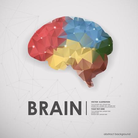 polígonos resumen de colores de fondo del cerebro humano. Ilustración del vector, icono