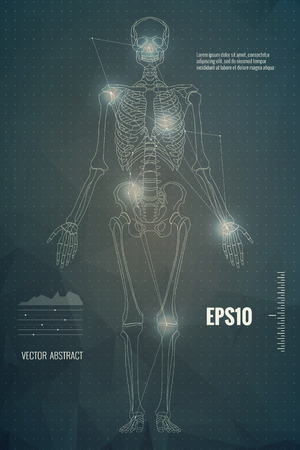 Vector skeleton modern scientific medical educational background Zdjęcie Seryjne - 89253533