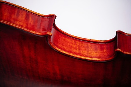 The violin fragment on a wihte background 写真素材