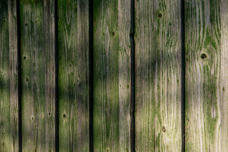 old green plank wall