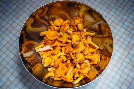 chanterelle mushrooms in metal salad ball