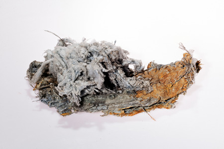 asbestos on the white background 스톡 콘텐츠