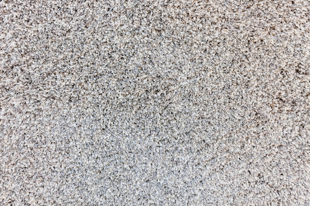 red carpet background: discreet gray carpet for the room, note shallow depth of field