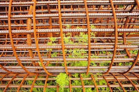 Round mesh reinforcement for columns with grass