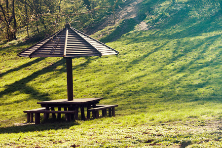 place for picnic in the woods, note shallow depth of field