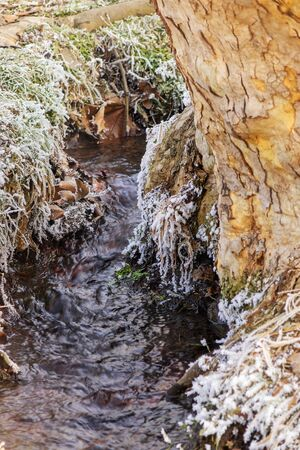 A small stream in the winter environment