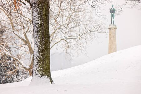 view of Belgrade Monument Victor under the snow, note shallow depth of field