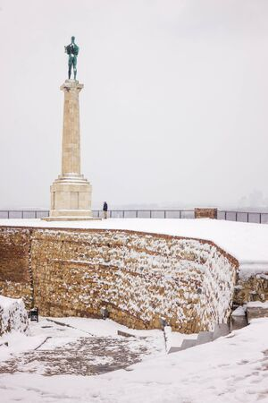 view of Belgrade Monument Victor under the snow , note shallow depth of field Publikacyjne