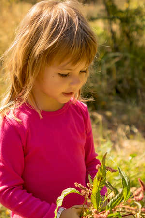 little girl picking up a flowers  in the grass