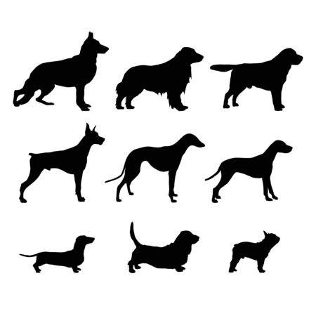 Set Black Dog Silhouettes are standing. Vector