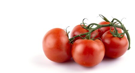 ripe tomatoes on a spout, white insulated background, close-up, place for text Фото со стока