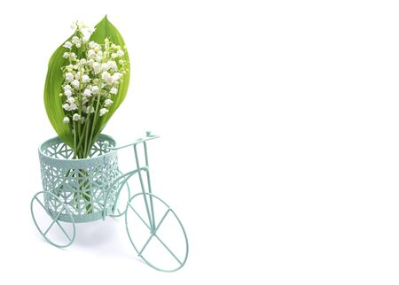 Flowers of the lilies in a decorative bicycle on a white isolated background, a place for text, a close-up Stockfoto