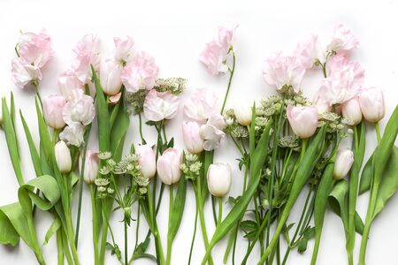 Nice floral background with light pink sweet pea flowers and tulips. Bouquet preparation. 免版税图像