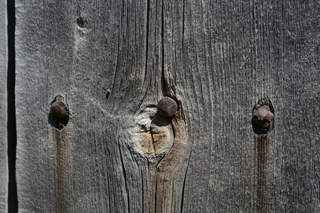 Background. Butt of old logs Stock Photo