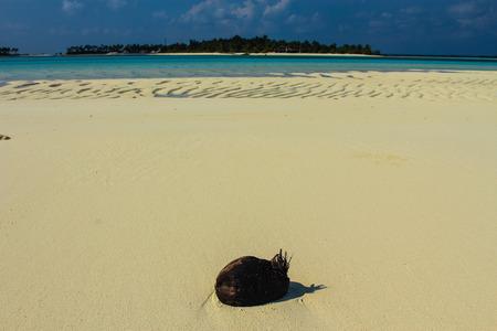 island: Maldives Island Fun Island.