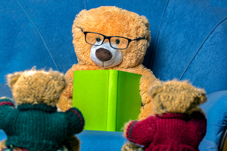 teddy bear with glasses learns