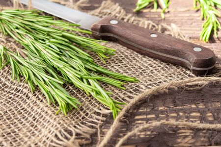 freshly cut rosemary on a jute fabric with a knife