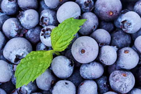 Frozen blueberries with mint leaf.