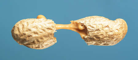 Peanut butter flows out of the broken peanuts on a blue background.