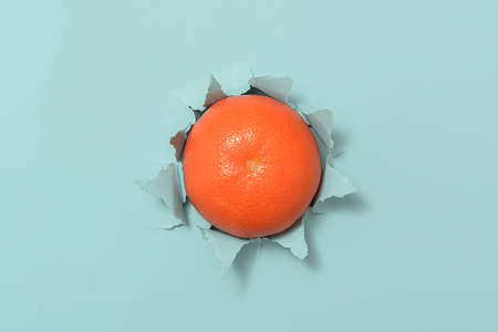 A ripe tangerine through torn blue paper.