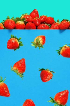 Falling ripe juicy strawberries on a blue background. Stock Photo