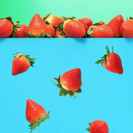 Falling ripe juicy strawberries on a blue background. 版權商用圖片