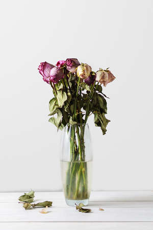 Bouquet of wilted roses in a glass vase on a white background.