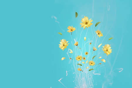 Bouquet of yellow flowers in the form of fireworks on a blue background with copy space.