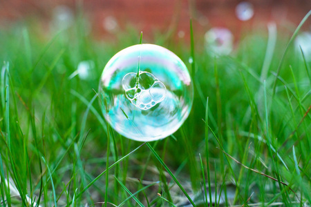 soap bubbles on green spring grass with beautiful blurred background. natural summer and spring background