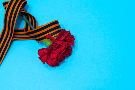 carnation and St. George ribbon on blue background as victory day greeting cards