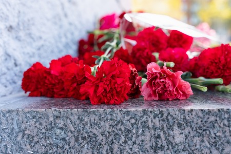 Red carnation flowers at the memorial to fallen soldiers in the world war II.holiday event Imagens