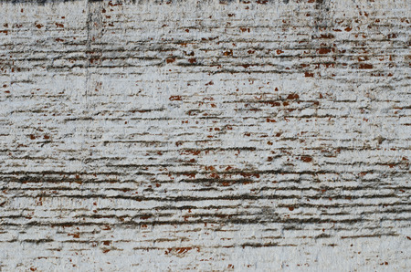 and eyelid: part of an old brick wall of a structure of the 17th eyelid