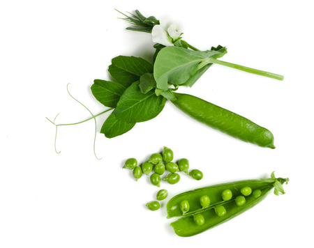 stalk: the part of a stalk of peas with leaves, a flower removed on a white background