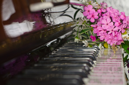 llave de sol: bouquet of summer flowers: the garden and field lies on a piano.