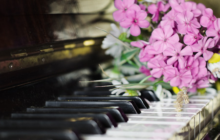 clave sol: bouquet of summer flowers: the garden and field lies on a piano.