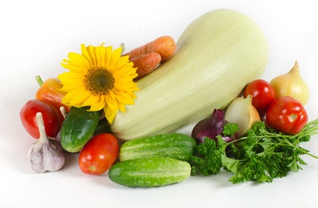 vegetable marrow: onions, garlic, cucumbers, tomatoes, carrots, vegetable marrow and parsley lie on a light surface. Nearby sunflower flower