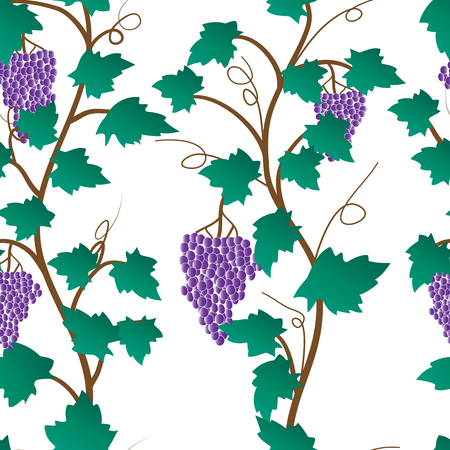 grape tree with leaves and fruits. vector seamless pattern. Banco de Imagens - 123192118