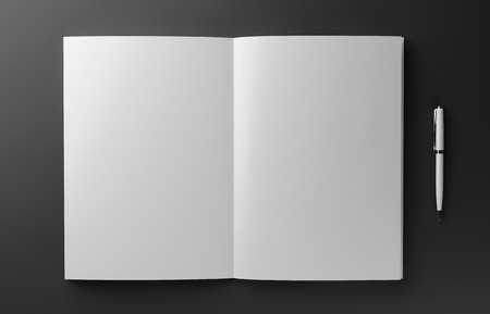 Blank photorealistic book mockup isolated on red background, 3D illustration. Stock Photo